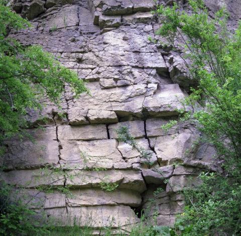 Elhagyott bazaltbánya (Salgóbánya) - Károlyi Ildikó