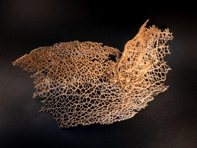 Kaktuszcsontváz - Károlyi Ildikó kerámia